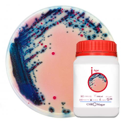 Хромогенная среда Rambach Agar